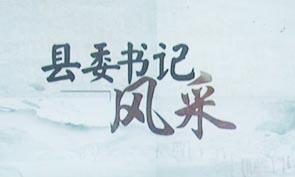 县委书记风采:武延军