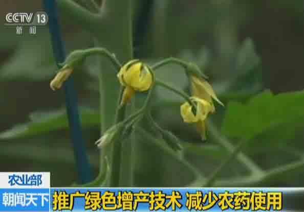 农业部:推广绿色增产