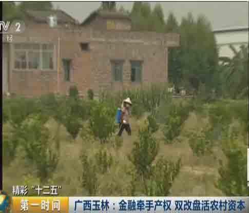 """精彩""""十二五"""":广西玉林——金融牵手产权  双改盘活农村资本"""