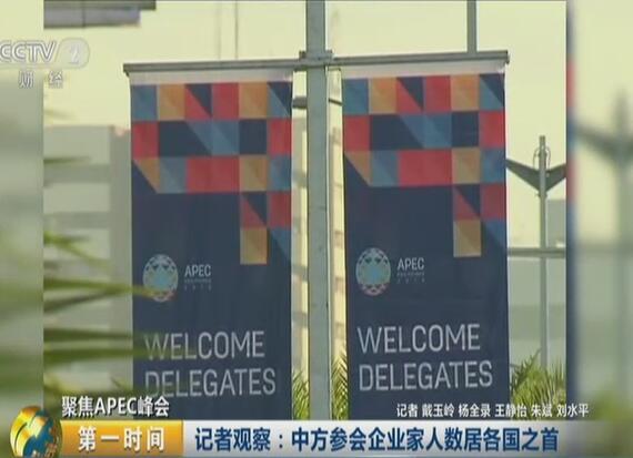 聚焦APEC峰会:记者观察——中方参会企业家人数居各国之首