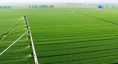 第六届北京国际都市农业科技节开幕  创新成果展示现代化农业科技