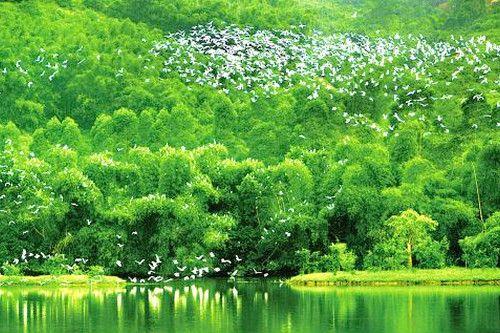 协同推进生态优先和绿色发展
