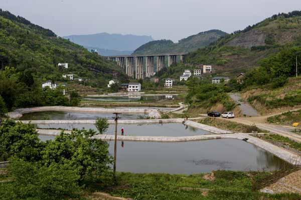 綦江农业综合开发项目风采