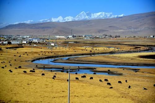 """世界自然基金会启动""""湿地使者行动"""" 聚焦长江保护"""