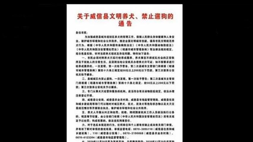 """云南威信县出台地方新规 城区全面""""禁止遛狗""""引发热议"""