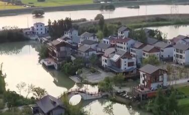 活力中国丨大学助力乡村振兴 金陵水乡绽新颜