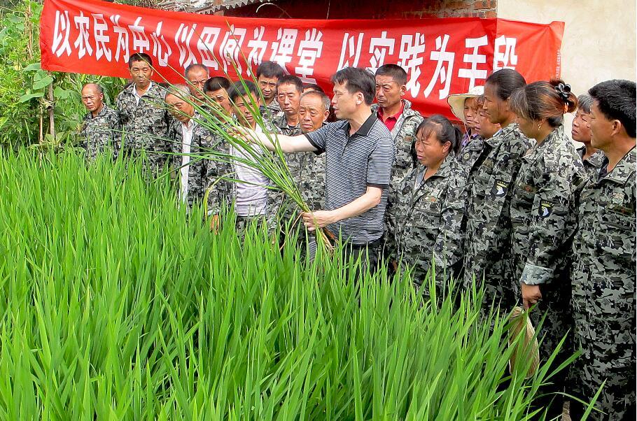 保障粮食安全生产的问题及实践——以重庆市梁平区为例