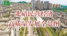 北碚民营经济高质量发展全景图