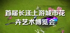 长江上游城市花卉艺术博览会